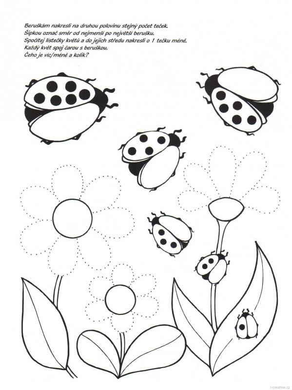 Blank Ladybug Template New 156 Best Ladybugs Images In 2020 Ladybug Baby Ladybug
