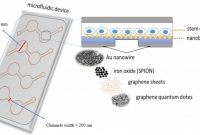 Blank Packaging Templates New Nanomaterials Free Full Text Pdms Nano Modified