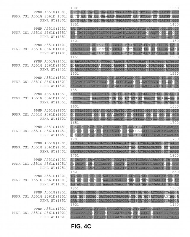Blank Pattern Block Templates Awesome Us20110061132a1 Functional Expression Of Yeast Nitrate