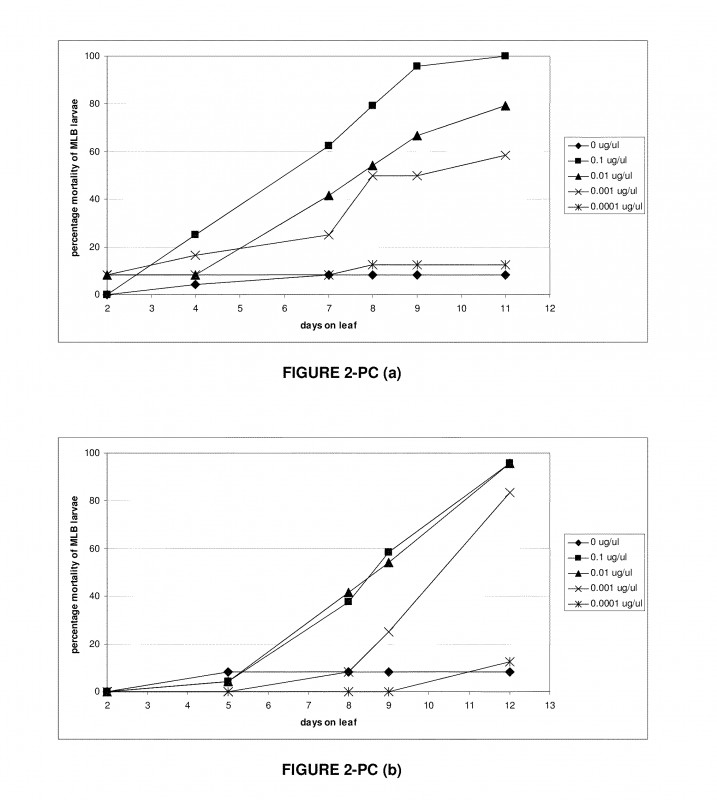 Blank Stem And Leaf Plot Template Unique Us8906876b2 Methods For Controlling Pests Using Rnai