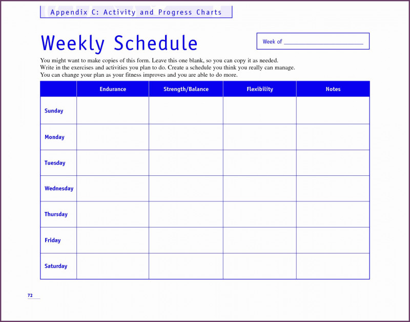 Circuit Panel Label Template Unique Beautiful Weekly Workout Schedule Template In 2020 with