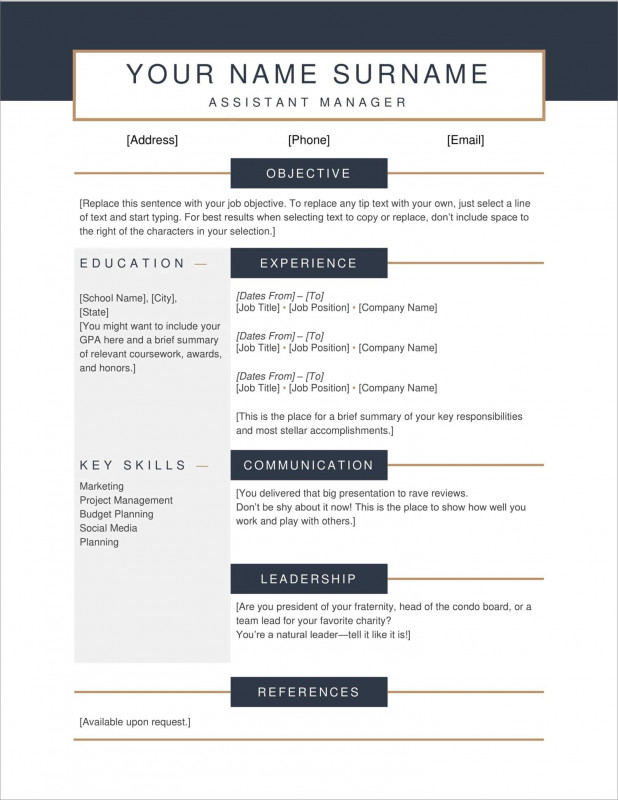 Free Blank Cv Template Download Awesome 17 Free Resume Templates Download Now