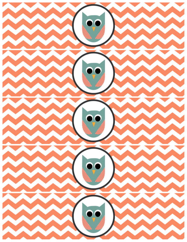 Free Water Bottle Labels For Baby Shower Template New 100 Graduation Water Bottle Labels Free Template 1042
