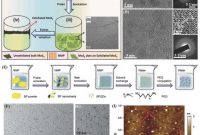 Heinz Label Template Awesome 2d Materials‐based Quantum Dots Gateway towards Next