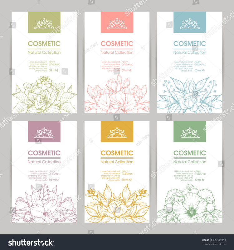 International Shipping Label Template New Vector Set Templates Packaging Cosmetic Label Stock Vector
