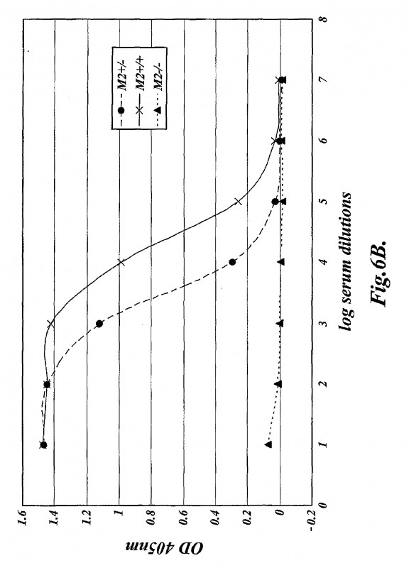 Lever Arch Spine Label Template Awesome Methods For Treating Conditions Associated With Masp 2