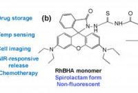 Storage Label Templates New Pdf Nanomaterials for Healthcare Biosensing Applications