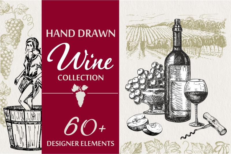Wine Bottle Label Design Template Awesome Wine Grapes Illustations Set Custom Designed