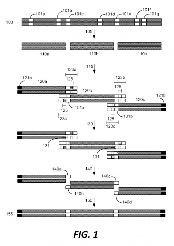 Bin Card Template Unique Us9677067b2 Compositions and Methods for Synthetic Gene