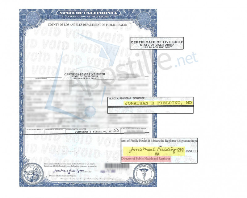 Building Fund Pledge Card Template New Los Angeles Certificate Of Live Birth Signed By Jonathan E