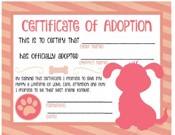 40+ Real & Fake Adoption Certificate Templates - Printable With Regard To Dog Adoption Certificate Editable Templates