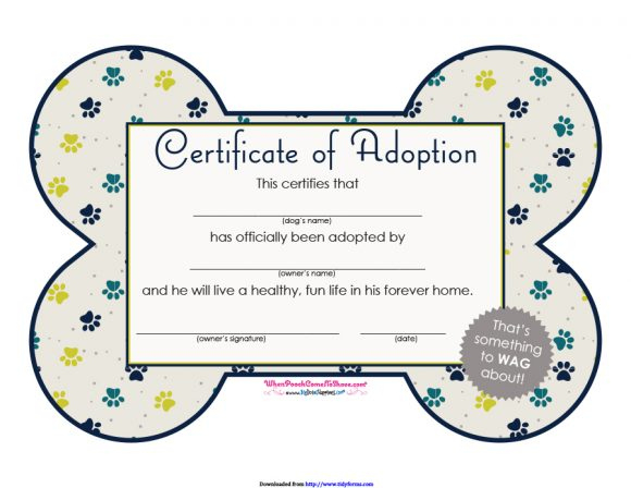 40+ Real & Fake Adoption Certificate Templates - Printable With Regard To Fresh Pet Adoption Certificate Template Free 23 Designs