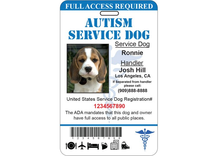 Autism Service Dog Id Card Ada Tag Badge Professional Custom For Service Dog Certificate Template Free 7 Designs