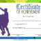 Basketball Certificate Template Free: 13+ Superb Designs Di 2020 throughout Fresh Basketball Certificate Template Free 13 Designs