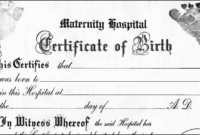 Build A Bear Birth Certificate Template Awesome Make Your regarding Pet Birth Certificate Template 24 Choices