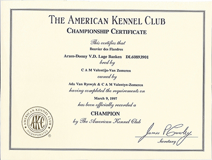 Certificate Archive | Reidsan For Best Certificate Of Championship
