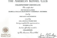 Championship Certificate | Reidsan In Best Certificate Of Championship