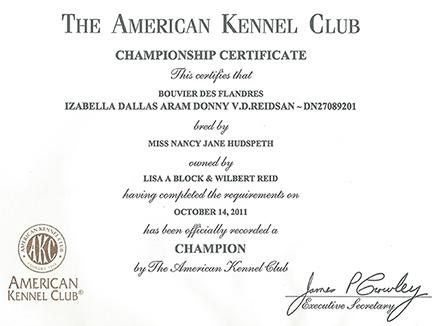 Championship Certificate | Reidsan In Best Certificate Of Championship