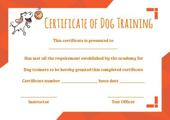 Dog Training Certificate Template In 2020 | Training With Dog Training Certificate Template