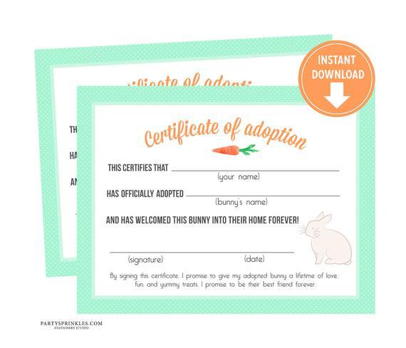 Mint Bunny Rabbit Adoption Certificates, Bunny Party Decor, Adoption  Center, Party Favors - Instant Download Regarding Rabbit Adoption Certificate Template 6 Ideas Free