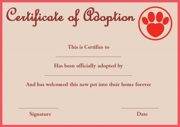 Pet Rock Adoption Certificate Template | Pet Adoption with regard to Pet Adoption Certificate Template