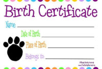 Pinlaurel Berg On The Doc Is In | Pet Adoption pertaining to Stuffed Animal Birth Certificate Templates