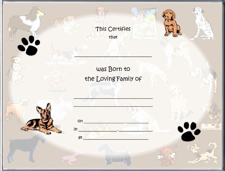 Puppy Birth Certificate Template Free Unique 85 Best Raisin Intended For Pet Birth Certificate Templates Fillable