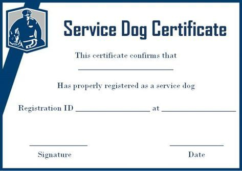 Service Dog Certificate Template Free In 2020 | Service Dogs regarding Dog Training Certificate Template Free 10 Best