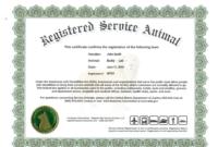 Service Dog Certificate Template In 2020   Certificate regarding Service Dog Certificate Template