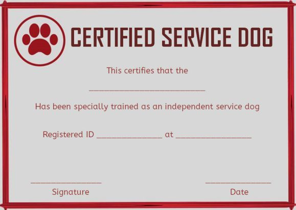 Service Dog Training Certificates Template | Certificate Intended For Dog Training Certificate Template Free 10 Best