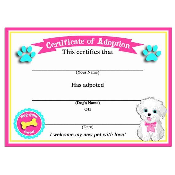 Toy Adoption Certificate Template 9 Di 2020 (Dengan Gambar) With Regard To Cat Adoption Certificate Template 9 Designs