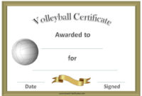 Volleyball Awards | Coaching Volleyball, Volleyball inside Unique Volleyball Certificate Template Free