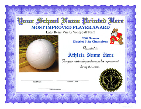 Volleyball Certificates With Volleyball Participation Certificate